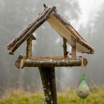 Vogelhaus aufstellen