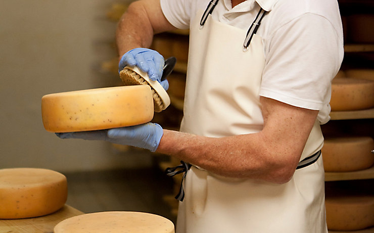 Käse wird im Keller mit Schmiere eingepinselt
