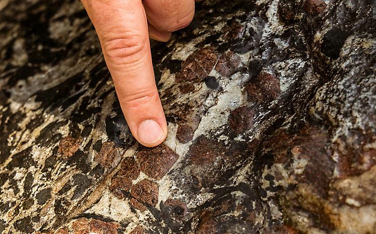 Die wertvollen Granaten, die Blutstropfen der Alpen genannt werden.