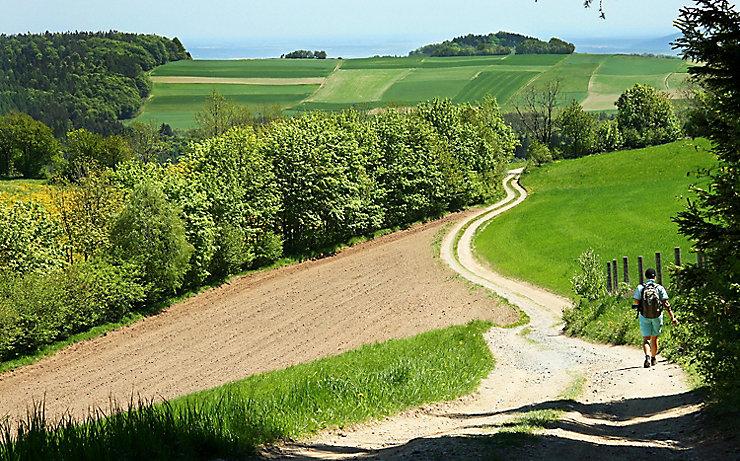 Alpannonia-Wanderweg