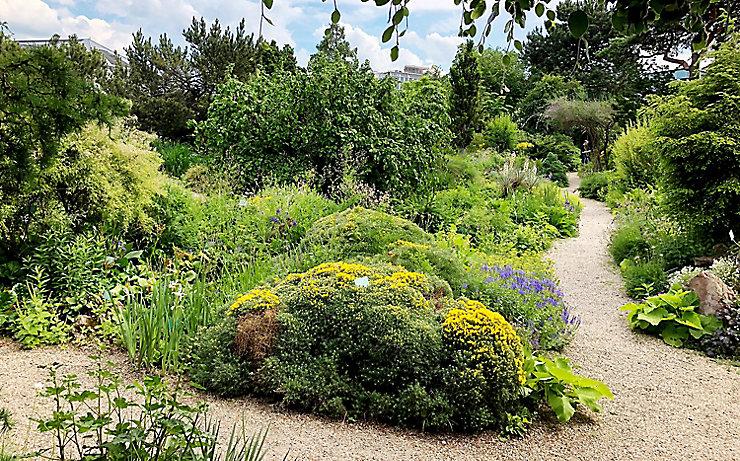Alpengarten im Belvedere