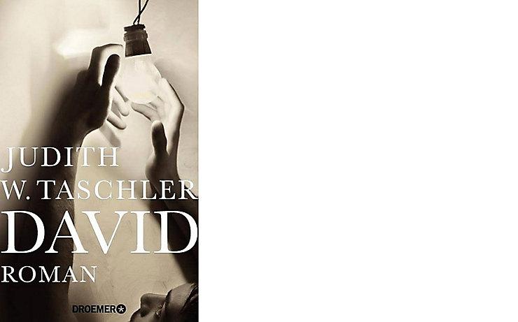 Buchcover David