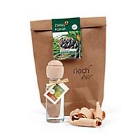 Naturreines Bio-Zirbenöl 30 ml