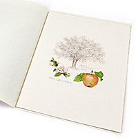Lebensbaum Apfel