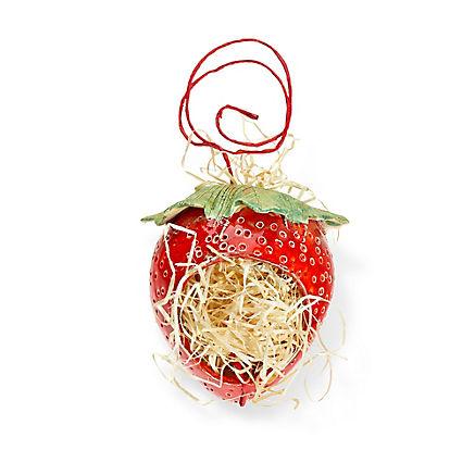 Nützlingshäuschen Erdbeere