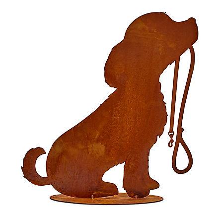 Hofhund Rocki