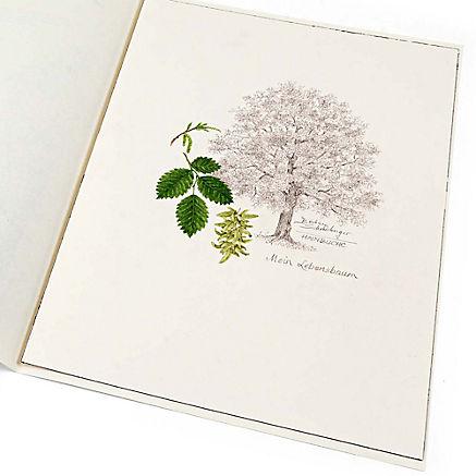 Lebensbaum Hainbuche