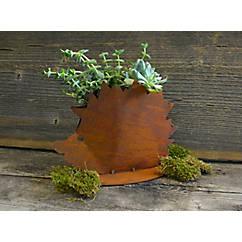 Igel zum Bepflanzen