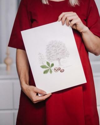 Lebensbaum Zeder