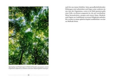 Mit der Kraft des Waldes