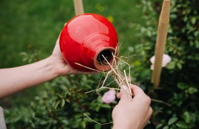 Rosenkugel Bauerngarten rot